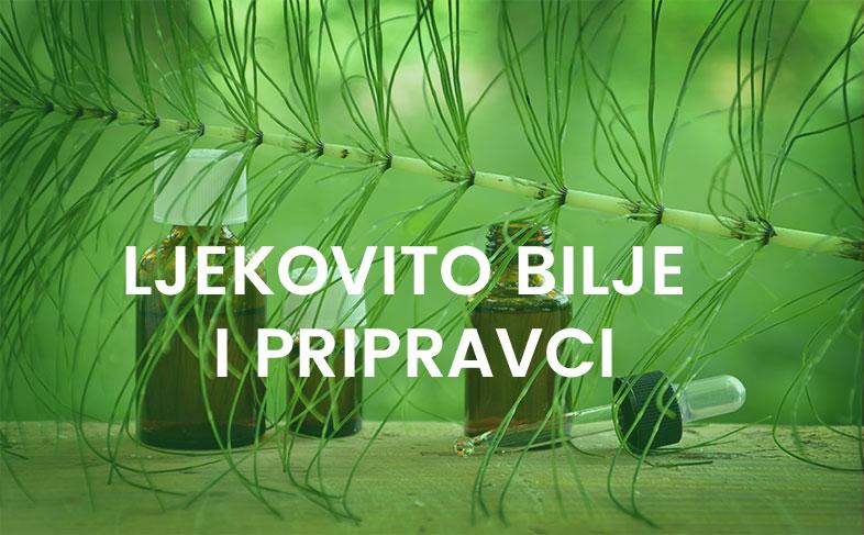biljni_pravi